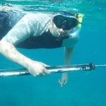 Spearfishing on Ambergris Caye, Belize